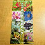 『ふれあい植物センターという渋谷のオアシスを見つけました』